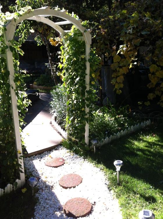 lawn-photos-004.jpg